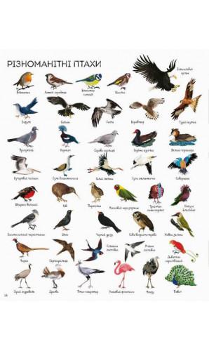 1000 назв тварин